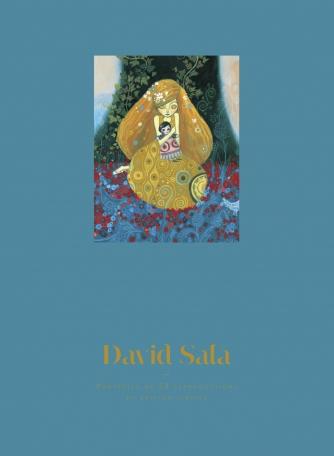 Portfolio David Sala